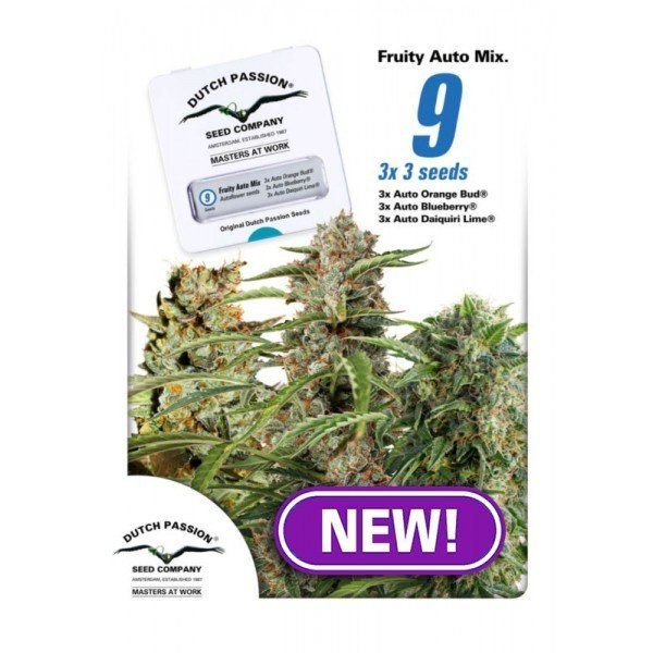 Auto Fruity Mix feminized, Dutch Passion
